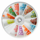 12 Colors Wheel Fimo Nail Art Decoration Mix Fruit Manicure