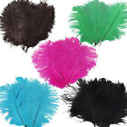 New Wholesale 10PCS Quality Natural Ostrich Feathers 20 25CM Color Selection