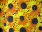 YELLOW SUNFLOWER LARGE DAISY GARDEN COUNTRY FASHION SEW CRAFT DECOR FABRIC BTHY