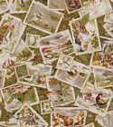 Cotton Print Fabric: GAME BIRDS FAUX STAMP & CARD COLLAGE COLLECTION: 2.08 Yds.