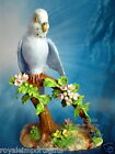 Crown Staffordshire Vintage Blue Parakeet Bone China Made in England by JT Jones