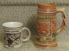 Vintage Grand Canyon Arizona Stein and Mug with 3D Relief Details