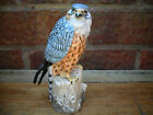 SUPERB MACK BIRD  FIGURINE THE MERLIN  SIGNED AND BOXED