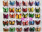 100pcs Art Design Decal Wall Stickers Home Room Decorations Butterfly The garden