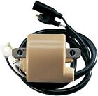 Parts Unlimited 01-143-10 External Ignition Coil