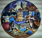 Bradford Exchange Kitten Cat Collector Plate Frisky Business Litter Rascals Cute
