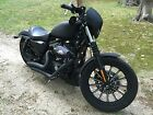 Harley-Davidson : Sportster 2009 iron 883 with only 10 k miles