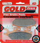 Yamaha TZR 50 Rear Sintered Brake Pads 1993-2002 - Goldfren - TZR50 TZR-50