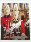 DID  The Life Guards Poster (26 1/2 By 19 1/2).