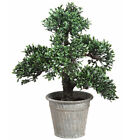 16 Artificial Boxwood Bonsai Tree w Tin Pot Green pack of 2
