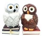 475 inches Book Owls Hedwig Magnetic Salt and Pepper Shaker Kitchen Set Ceramic
