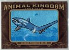 2013 Goodwin COMMON THRESHER SHARK Rare Animal Patch AK-269 Champions UD