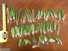 FEATHERS from our Blue Crown Conure PARROT Craft Fly Arts Tying Lot 8