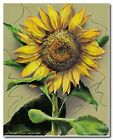 Sunflower Flower Floral Wall Decor Art Print Poster 16x20