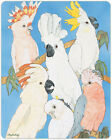 Cockatoo Parrot Cutting Board Tempered Glass Large 115 x 155