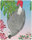 African Grey Parrot Cutting Board Tempered Glass Large 115 x 155