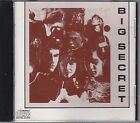 BIG SECRET! - Ultra Rare Indie Female Fronted AOR CD ! LIVINGSTON FURY, GALLERY