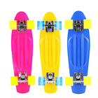 Fish Cruiser Complete Skateboard Stained Multi Color22SkateboardsReady to Ride