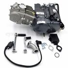 LIFAN 150cc Oil Cooled Manual Engine Motor Kit SDG SSR XR CRF Pit Dirt Bike