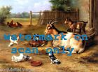 c1940 EHunt Chickens Pigeons Goats in Farmyard Scene NEW Large Note Cards