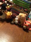 (6) Ty Beanie Babies: Wise, Twigs, Runner, Dog, Darling, And Tiger With Tags