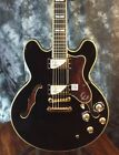 Epiphone Sheraton II PRO Semi-Hollowbody Electric Guitar with Hardshell Case