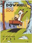 Calvin and Hobbes The Downhill Steve Thomas Poster Art Watterson strip book