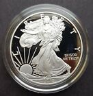 2010 Proof American Silver Eagle with Complete Mint Packaging