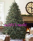Balsam Hil Classic Blue Spruce Christmas Tree 65 CLEAR LIGHT
