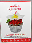 Hallmark: Candied Christmas Rose Christmas Cupcake Series 8th Keepsake Ornament