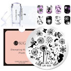 Nail Stamping Plate with Clear Jelly Stamper Set Dandelion Dragonfly Template