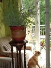 Pair of Tall wooden Barley twist jardiniere plant stands