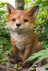 Fox Pup Sitting Figurine Life Like Figurine Statue Home Garden New