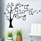 Family tree birds picture 3D Window Decal WALL STICKER Home Decor Art Mural