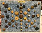68 Antique VTG VEGETABLE Ivory BUTTONS~RARE COLLECTION CARVED~PRESSED~CUT~CALICO