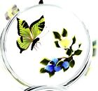 MAGNUM Victor TRABUCCO Swallowtail BUTTERFLY and BERRIES Art Glass PAPERWEIGHT