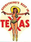 Texas Pin Up Girl TX 1950s Vintage Looking Travel Decal Sticker