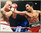 2233287598374040 1 Boxing Photos Signed