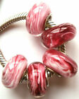Wholesale Silver Lampwork Murano Glass Beads Fit European Charm Bracelet TF263