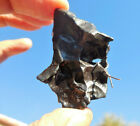 Top Quality w hole 307 g SIKHOTE ALIN IRON meteorite 1947 fall in RUSSIA