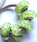 Wholesale Silver Lampwork Murano Glass Beads Fit European Charm Bracelet TJ2183