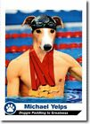 Looking for Gold? The 10 Best Michael Phelps Cards 21