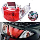 Sunny Rear Tail Lights Fit for Chinese Scooter GY6 50CC Engine Taotao ATM50