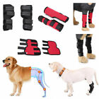 Pet Products Dog Knee Pads Health Care Legs Injury Recovery Outdoor Breathable