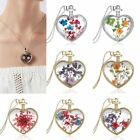 New Women Heart Dried Flowers Sliver Plated Bead Chain Pendant Necklace Jewelry