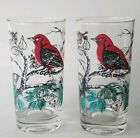 RARE!!~2 FEDERAL SCARLET TANAGER DRINKING GLASSES~HAND PAINTED~1953-1954