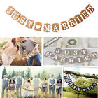 JUST MARRIED Wedding Banner Party Decoration Bunting Garland Photo Booth Prop US
