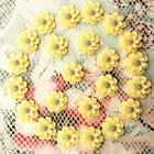 20pcs Resin Rose Flower flatback Appliques For phone wedding crafts QH8