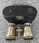 Antique Chevalier Mother of Pearl  Brass Opera Glasses W Case Paris France