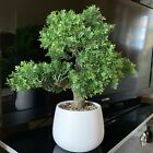 Artificial Indoor Plant Bonsai Tree In Pot 40 Tall Bon Sai Bonsai Chinese Plant
